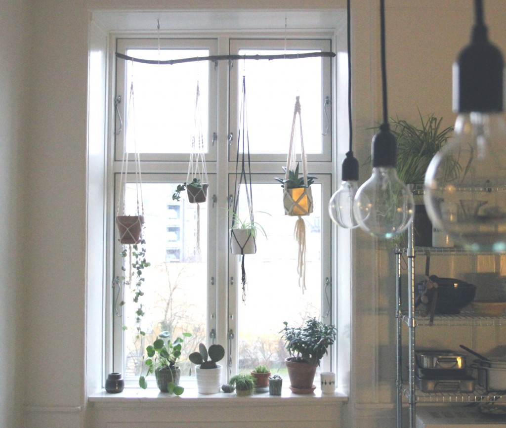 window macrame plant hangers