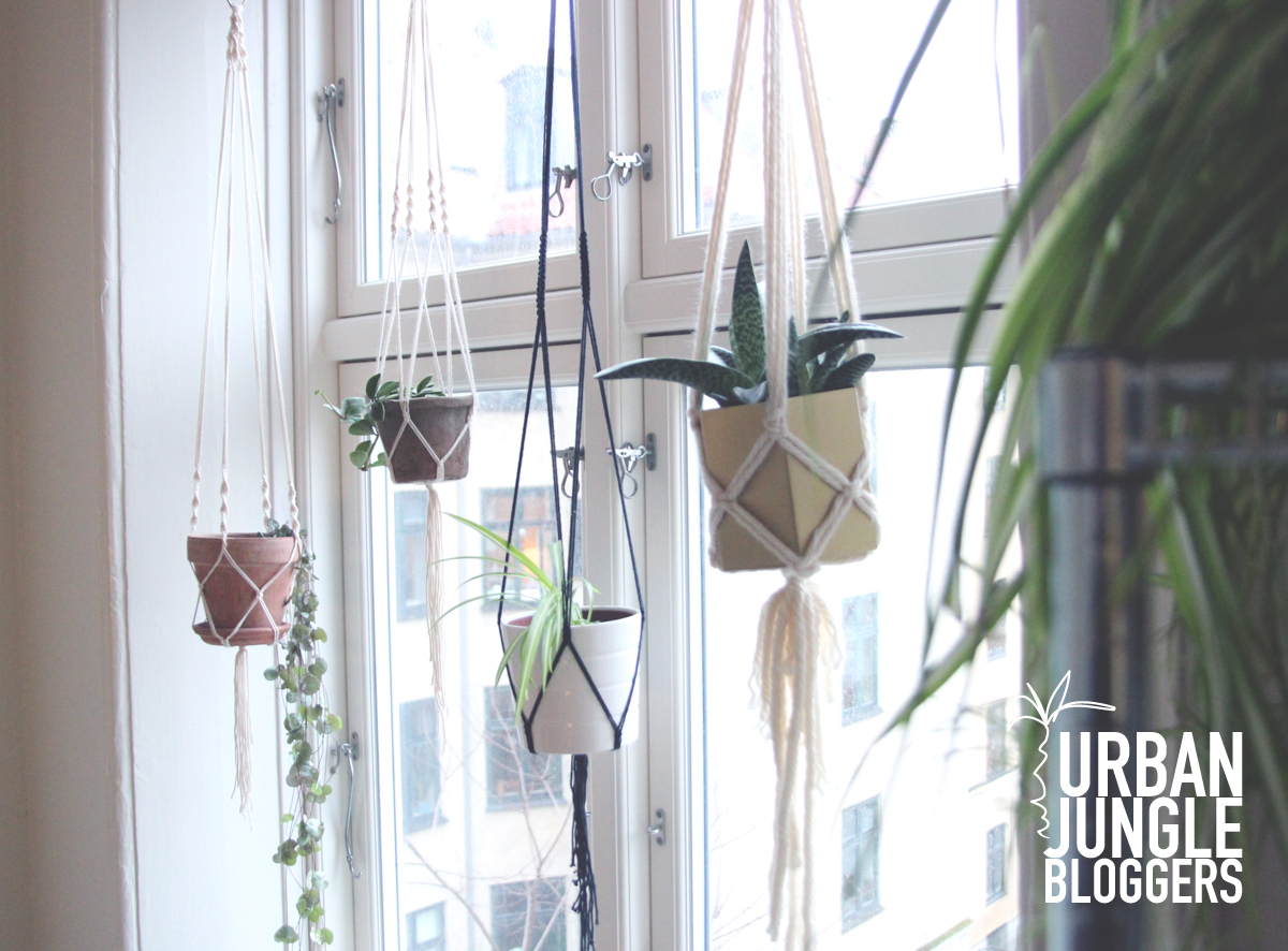 Bathroom Curtain Ideas Pinterest My Macrame Plant Hangers
